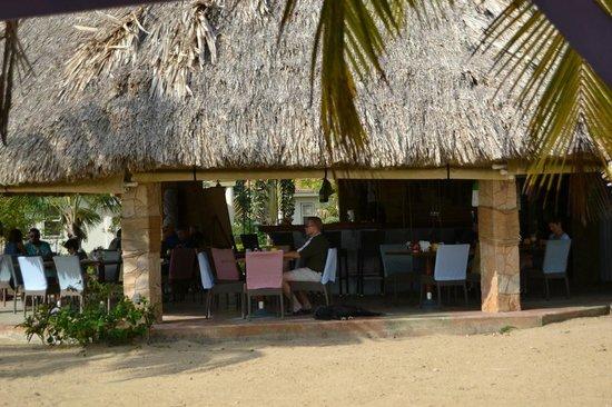 Hopkins Bay Resort: restuarant