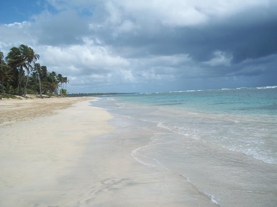 Excellence Punta Cana : Want calm water?  Walk a mile down the beach and you'll find this!