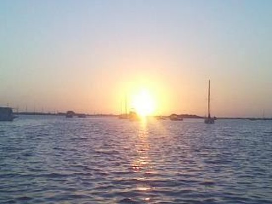 Boyd's Key West Campground: Sunrise from waterfront tent site