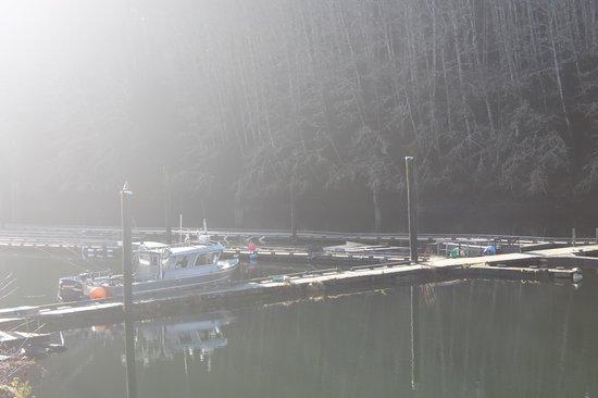 Vicious Fish Charters: boat at wharf