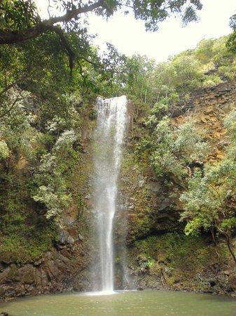 Kayak Wailua : Secret Falls 3