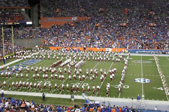 University of Florida : at one of the game - no luck for Gators!