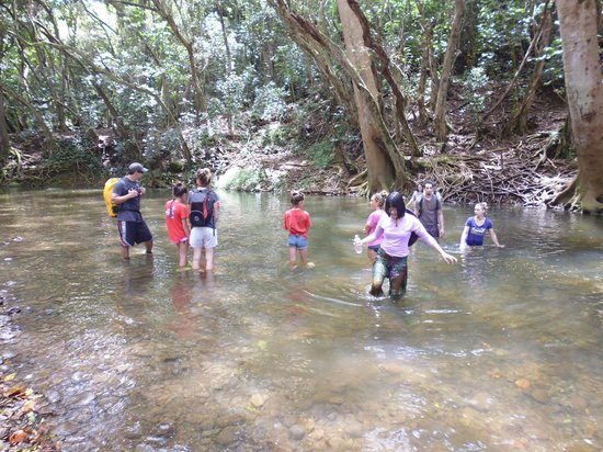 Kayak Wailua : Crossing Wailua in waist deep water