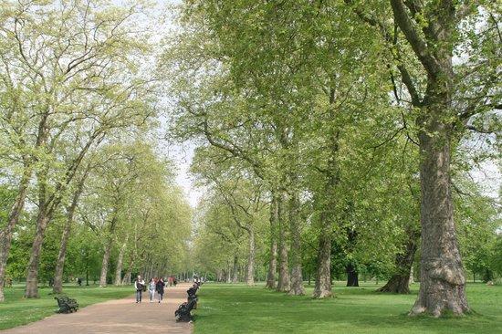 37 Trevor Square: Hyde Park