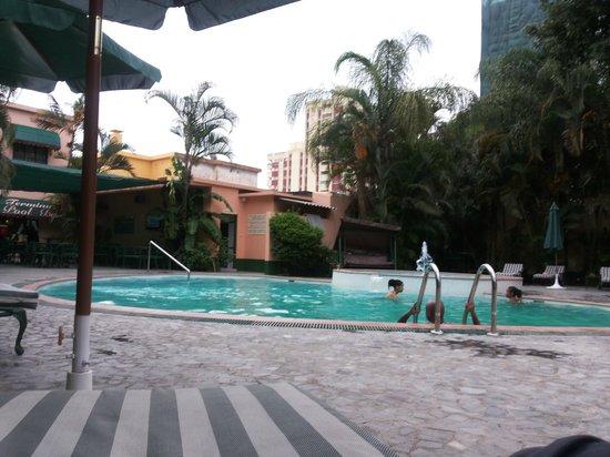 Hotel Terminus : Pool