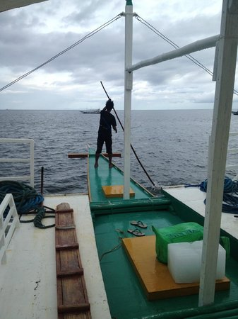Thresher Shark Divers: Guiding our boat