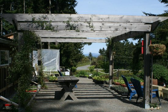 Damali Lavender Farm and B&B: Wine Tasting Area