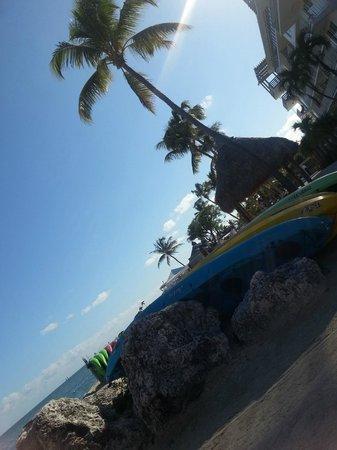 Postcard Inn Beach Resort & Marina : Beach area