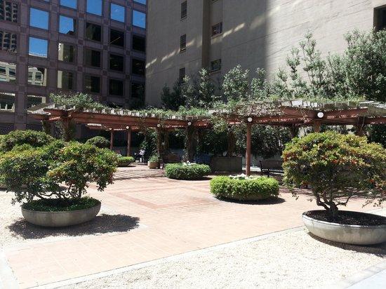 Galleria Park Hotel roof top garden