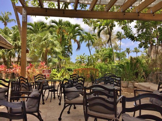 Caneel Bay Resort : seating outside the espresso ice cream shop
