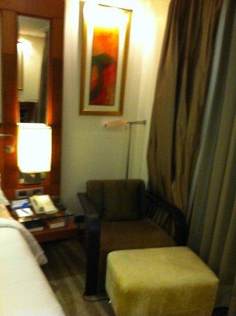 Radisson Blu Plaza Delhi Airport: Room