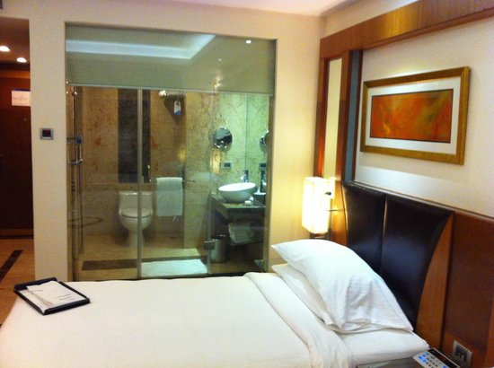 Radisson Blu Plaza Delhi Airport: Bathroom