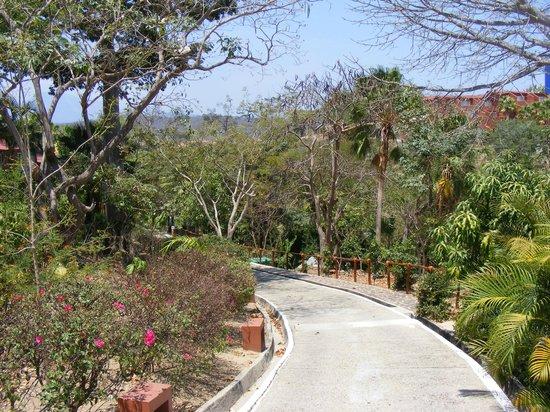 Las Brisas Huatulco: Pathway