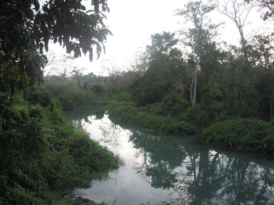 Narayani River : Chitwan walk