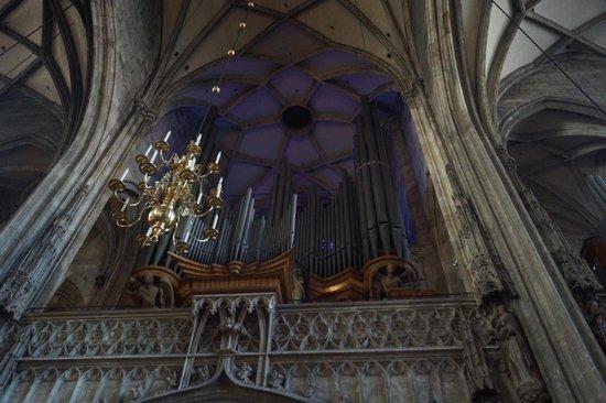 Cathédrale Saint-Étienne (Stephansdom) : Собор Святого Стефана - орган