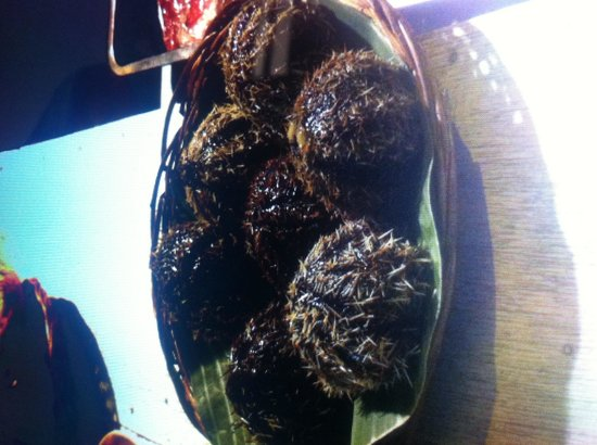 Puerto Princesa City Baywalk Park : Try the salty grilled sea urchins for Php30.00/ piece..