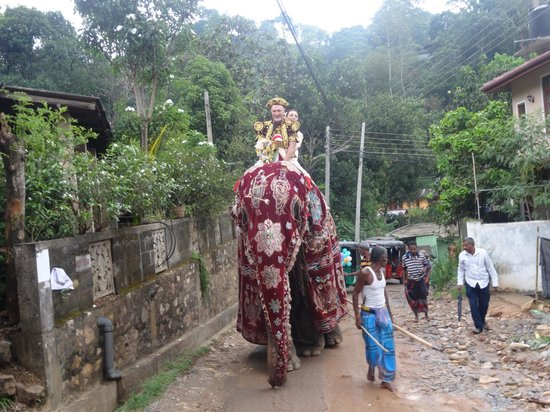 Rainbow Tours Sri Lanka: ride to the temple for the ceremony