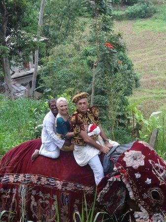 Rainbow Tours Sri Lanka: ride to the temple