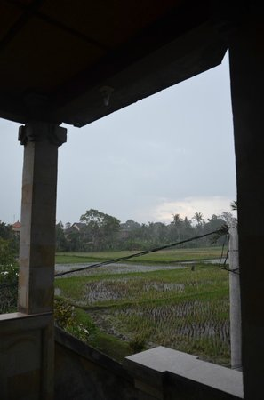 Pangkung House : view