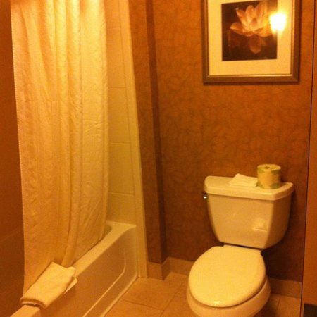Homewood Suites by Hilton Austin / Round Rock : Banheiro