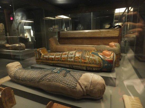 Museo de Bellas Artes: Mummies on display!