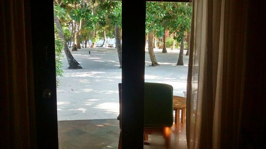 Kurumba Maldives : Beach