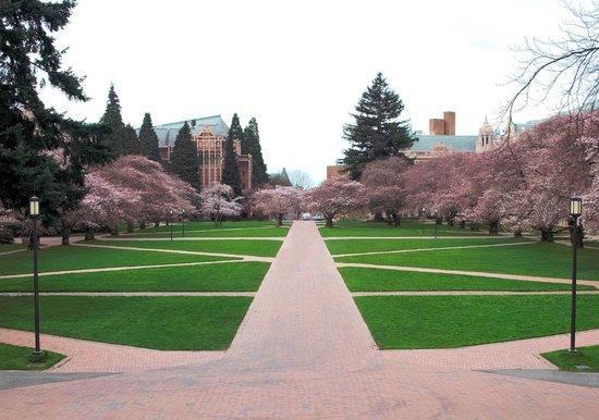 University of Washington: The Quad