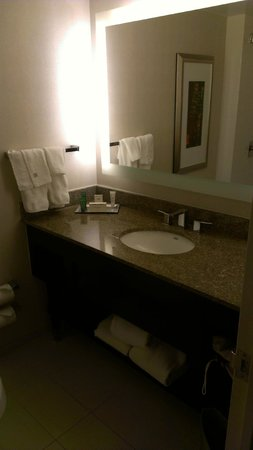 Hilton Atlanta Airport: Bathroom