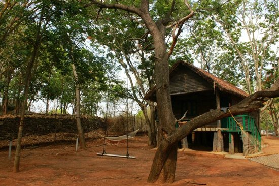 Bannerghatta Nature Camp: Log Hut