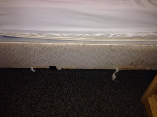 Mesa Inn Grand Junction : Older than me bed