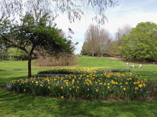 Fellows Riverside Gardens: view of the common area of the garden