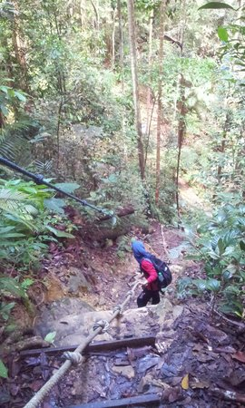 Mount Santubong: Ropes make it easier
