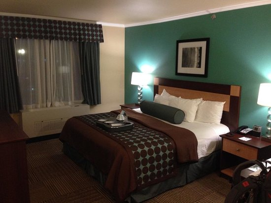 BEST WESTERN PLUS Chena River Lodge: my room