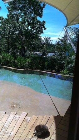 Soneva Kiri Thailand: ocean view from the room