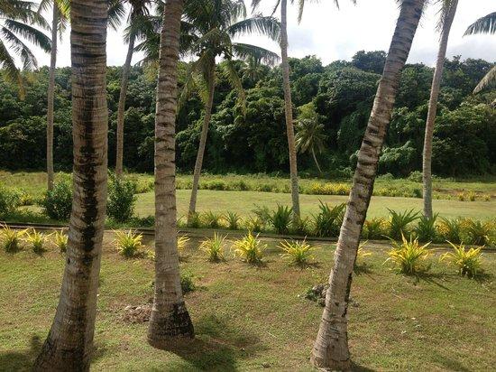 Namuka Bay Lagoon Resort : grounds