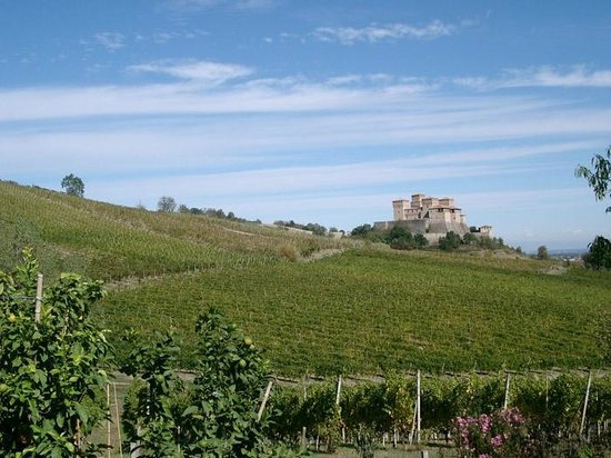 Food Valley Travel & Leisure: Parma hills with Torrechiara Castle