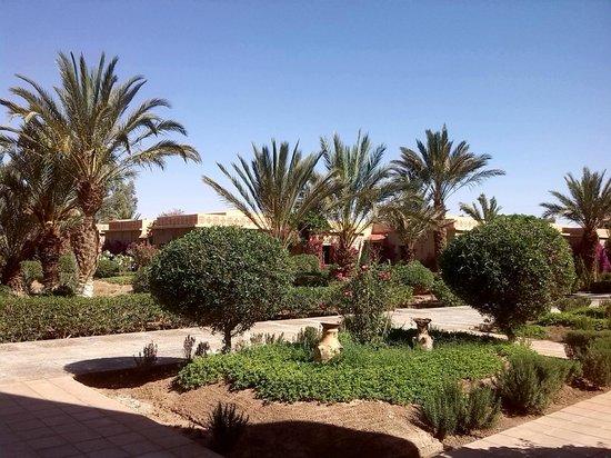 Belere Hotel Erfoud: jardines eden