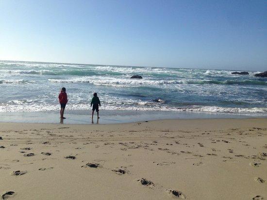 The Beachcomber Motel and Spa on the Beach: Beach