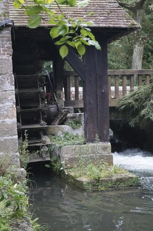 Le Moulin Fleuri du Petit Appeville : the old waterwheel