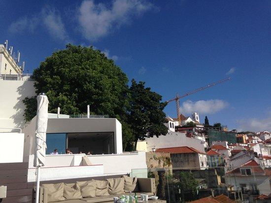 Memmo Alfama Hotel: The backyard