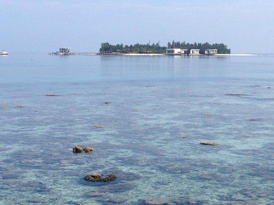 Dhevanafushi Maldives Luxury Resort Managed by AccorHotels: VISTA DE LA ISLA DESDE LAS VILLAS DE AGUA