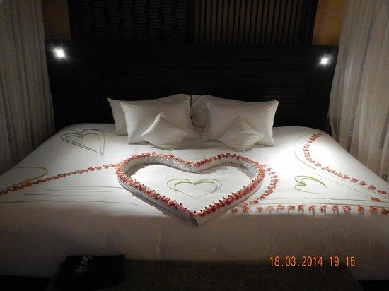 Dhevanafushi Maldives Luxury Resort Managed by AccorHotels: DETALLE DEL HOTEL