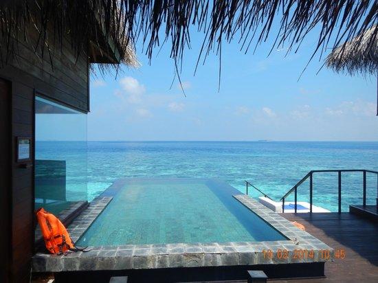 Jumeirah Dhevanafushi: PISCINA DE LA HABITACION
