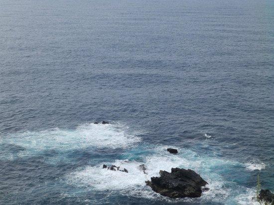 Cape Ashizuri: 展望台からの太平洋