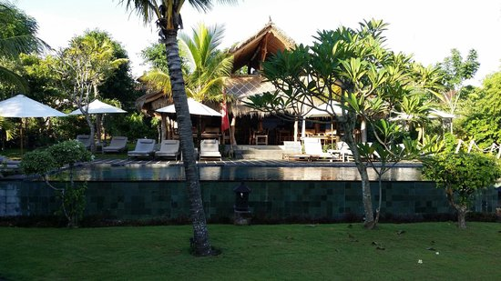 Flower Bud Bungalows Balangan: Pool and restaurant