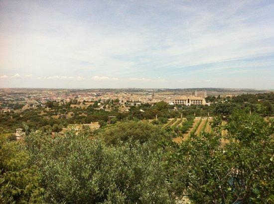 Vinedos Cigarral Santa Maria: Scenic View