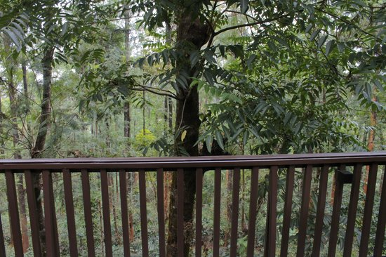The Tamara Coorg: View from room 109