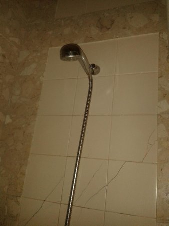 SANA Estoril Hotel: Shower head to be held in place with cracked tiles visible