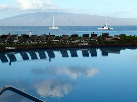 Sheraton Maui Resort & Spa : the pool