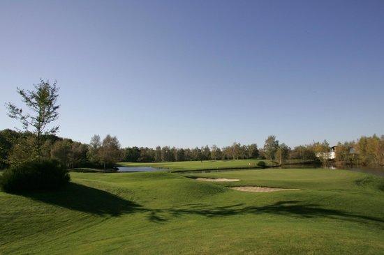 Hôtel Les Portes de Sologne : Golf